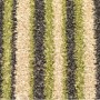 pistachio striped carpet